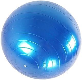 Fortitude Sports Swiss Ball - Pelota de Ejercicio con Bomba para Yoga, Fitness, Pilates, Gimnasio (65 cm, Antideslizante)