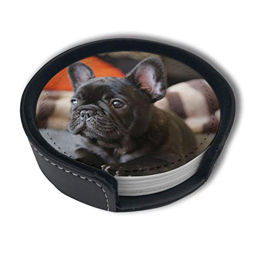 French Bulldog Drinks Coasters With Holder, Suitable For Kinds Of Cups, Set Of 6