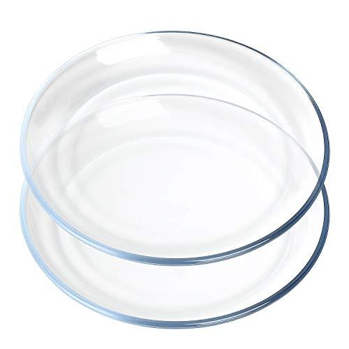 FOYO Juego de platos de vidrio templado redondos para servir (25,4 cm de diámetro, 2 unidades)