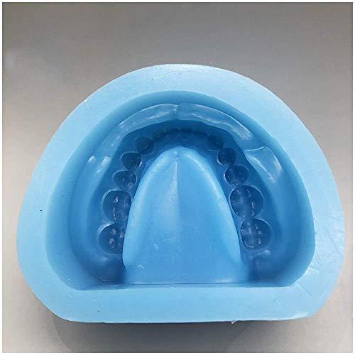 OKMIJN Prothesenform - Lehrmodell Für Zahnzahnstudien - Weiches Silikonblau Ober- Und Unterkiefer Raffiniertes Pflaster Standardzahnmodell - Zahnmodell Für Die Ausbildung