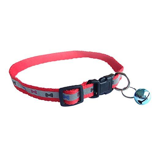 collier pour chien avec grelot