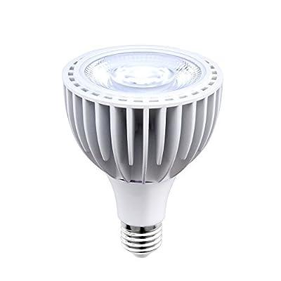 Aluxcia 40W LED Par30 Swimming Pool Light