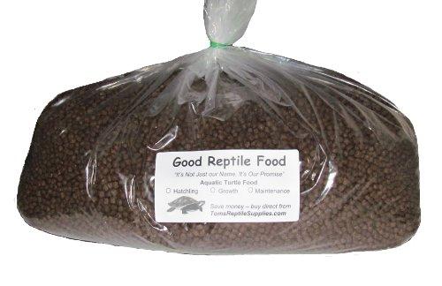 Good Turtle Food
