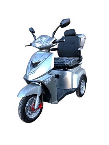 E- Rider TMM 3 Seniorenmobil Seniorenfahrzeug Dreirad ElektroRoller E-Scooter Elektromobil 25 km/h 1000W Lithium Ionen Akku 3 Rad Farbe Silber