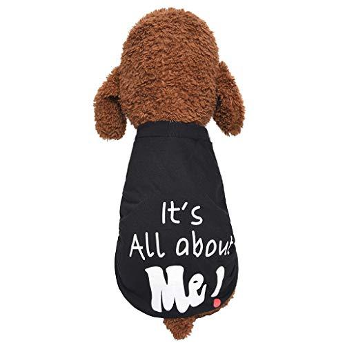 Coversolat Hundepullover Kleine Hunde - Hund Pullover mit Brief Muster Welpen Hundemantel Hundekleidung