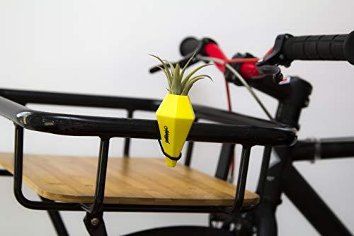 Anhängsel Fahrradvase LOM - Vase für den Fahrradlenker. Origineller Geschenkartikel Fahrradzubehör