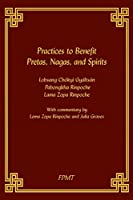 Practices to Benefit Pretas, Nagas and Spirits