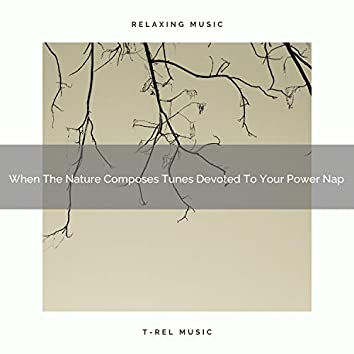 When The Nature Composes Tunes Devoted To Your Power Nap