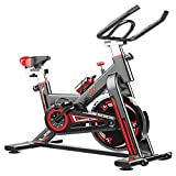LEEWAY National Bodyline Exercise Bike Indoor Cycling Bike Fitness Stationary| Spin Bike Flywheel...