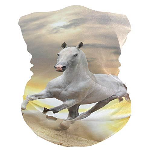 para Polvo Aire libre Deportes Montar Atardecer Desierto Animal Caballo Correr Caballo Mascarilla Bandana Bufanda mágica Multifuncional Headwear Diadema