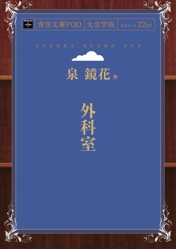 外科室 (青空文庫POD(大活字版))