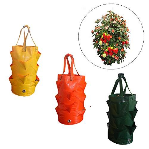 3 Stück Pflanztüten hängend Garten Pflanzgefäße Taschen Gewächshausbeutel Beutel zum Aufhängen Blumen Gemüse Erdbeeren Taschen für Balkon Terrasse Grün Haus Garten Zufällige Farbe