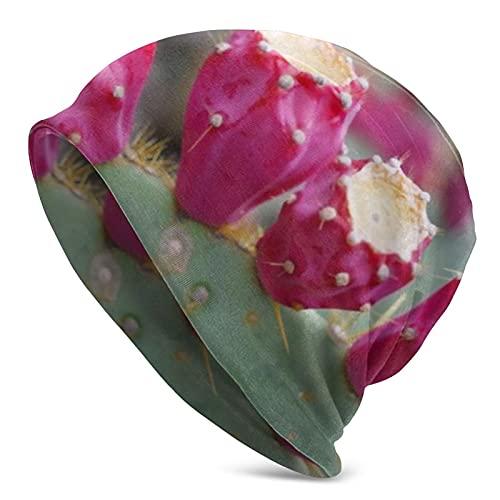 Cute Pillow Rosa Cactus Frutas Flores Argentina Mujeres Sombrero De Punto Bufanda Conjunto Invierno Caliente Espesar Crochet Beanie Hat Cap Esquí Al Aire Libre