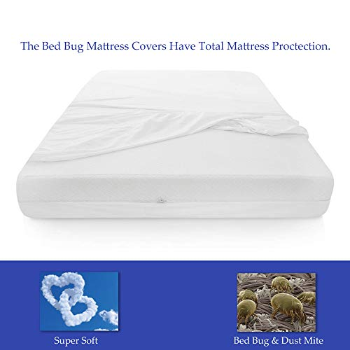 Spring Solution Mattress or Box Spring Protector, 9-10 Inch, Full, White