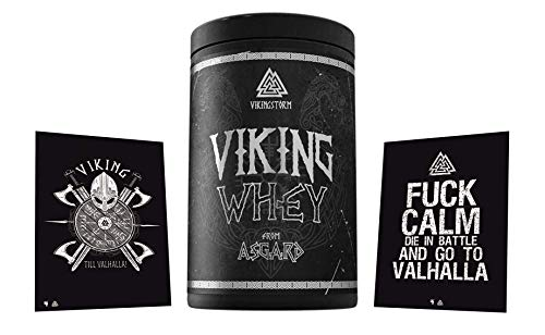Limited Edition Gods Rage Viking Whey Proteinshake Eiweißshake Protein Fitness Bodybuilding 1000g inkl. exclusive Postkarten (Triple Chocolate)