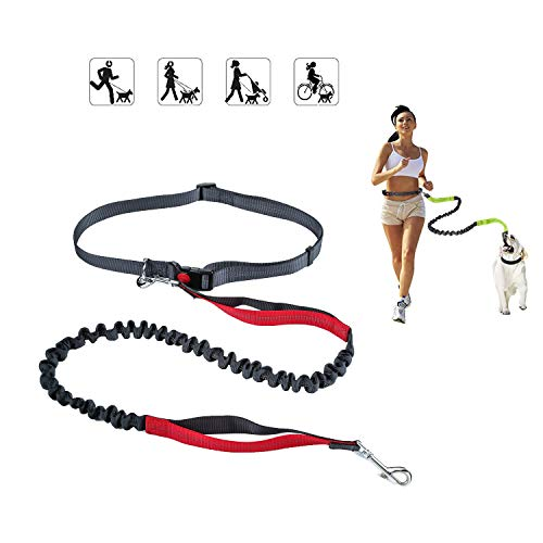 Love Dream Retractable Hands Free Dog Leash for Running Walking Hiking Training, Adjustable Waist Belt, Dual-Handle Bungee Leash for Medium Large Dogs, Reflective Stitching, 4 Foot Long (Black/red)