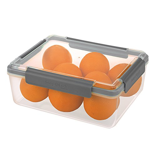 SnapLock by Progressive 20-Cup Container - Gray, Easy-To-Open, Leak-Proof Silicone Seal, Snap-Off Lid, Stackable, BPA FREE