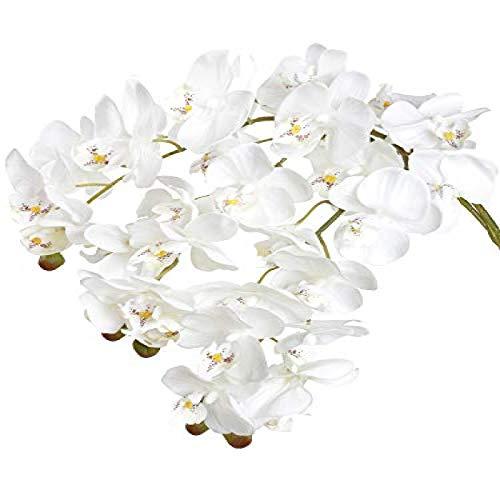 YYHMKB Artificiale Phalaenopsis Orchidea Fiori Real Touch 11 Teste Crema Bianca Farfalla Orchidea Fiori Per La Decorazione Domestica Confezione Da 3 (Bianco Crema)