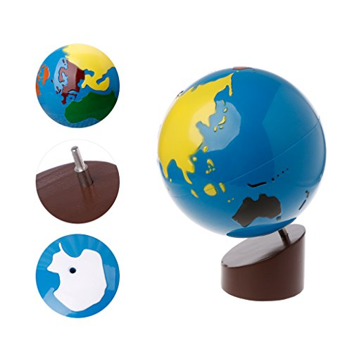 Noband JSFGFSDH Montessori Geography Material Globe of World Parts Kids Early Learning Toy