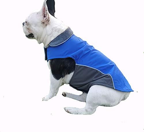 BONAWEN Winter-Hundemantel, wasserdicht, dick, für kleine und mittelgroße Hunde, Chihuahua, Yorkie, Shih Tzu Basenji Mops, Französische Bulldogge (Blau, L)