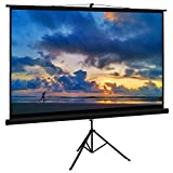 Cloud Mountain Projector Screen with Stand 100...