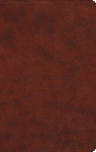 ESV Large Print Value Thinline Bible (TruTone, Chestnut)