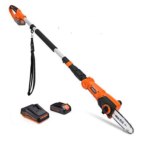 TACKLIFE 20V 8-INCH Cordless Pole Saw, 6.5-8.8 Ft Telescoping Electric Pole Saw, Oregon Chain, 46Nm Torque, Tool-free Installation, Adjustable Head Pole Saw for Tree Trimming-TKPS01D