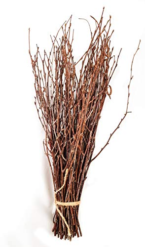 50 Birch Twigs, Birch Branches centerpieces, Decorative Birch, Birch Branches for Crafts