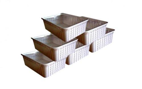 F&M 100 weiße Rechteckdosen, Transportboxen, Börsendosen, mit tranparenten Deckel, 2 Seiten perforiert (gelocht)