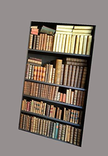 Oedim Display Fondo Librería para Videollamadas | Medidas 180 x 240 cm | Ideal para Colocar en Las videollamadas.