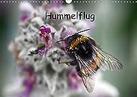 Hummelflug (Wandkalender 2022 DIN A3 quer): Hummeln sind faszinierend. Ueberzeugen Sie sich selbst von ihrer Schoenheit. (Monatskalender, 14 Seiten )