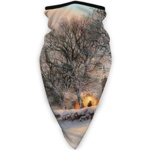 BJAMAJ Wintermaske Winterwald Schneeflocke Landschaft Outdoor Gesicht Mund Maske winddicht Sport Maske Skimaske Schal Bandana Herren Damen
