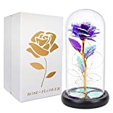 Artificial Colorful Flower Rose Gift, Led Light on Galaxy Rose in Glass Dome, Best Gifts for Mother Women Valentine's Day Christmas Wedding Anniversary Birthday - Purple