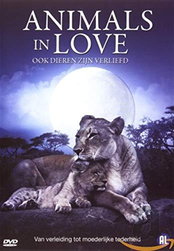 dvd - Animals in love (1 DVD)