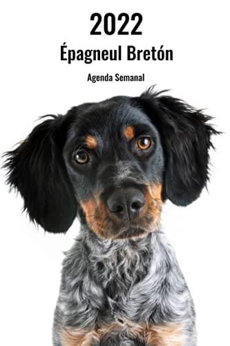 2022 Épagneul Bretón Agenda Semanal: 143 Páginas | Tamaño A5 | 14 Meses | 1 Semana en 2 Páginas | Planificador | Agenda Semana Vista | Canófilo | Perro | En Español