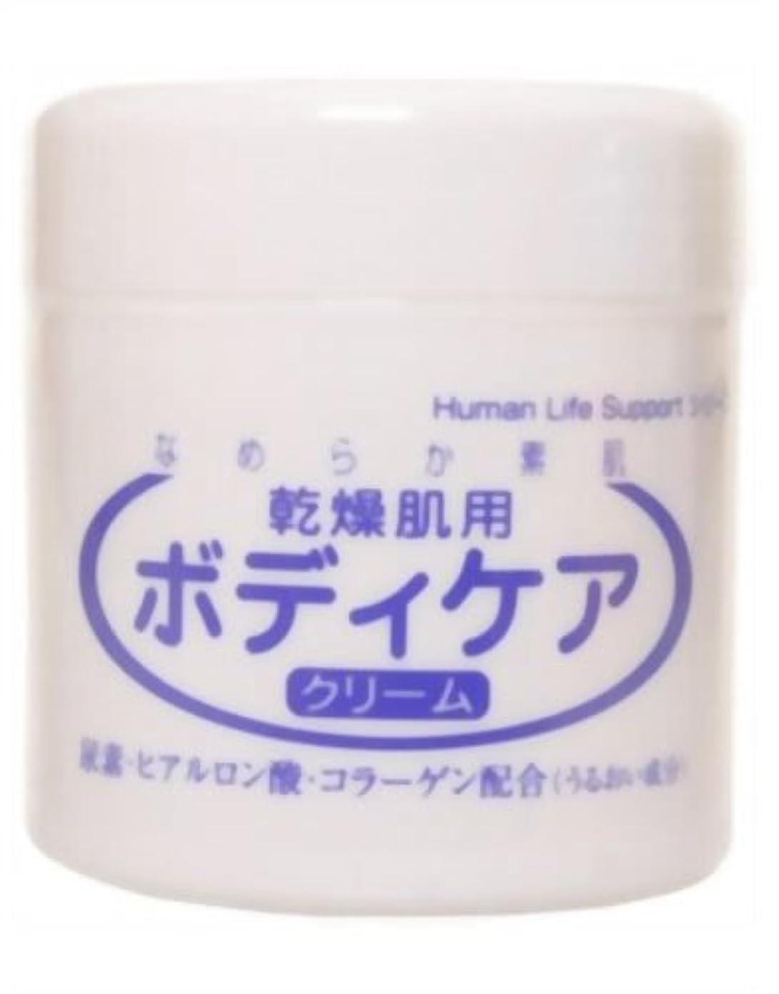 将来の協力的ペイン乾燥肌用ボディケアクリーム 230g
