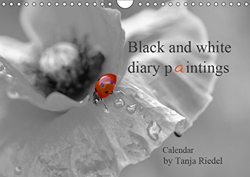 Black and white diary paintings by Tanja Riedel Great Britain Edition 2019: Great black and white photographs with a small splash of color as a great contrast in the image (Calvendo Food)