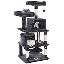 Best Cat Tree for Maine Coon Cat