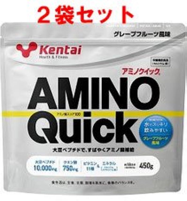強調商業の地下鉄【ケンタイ】健康体力研究所 アミノクイック450g (2個セット)