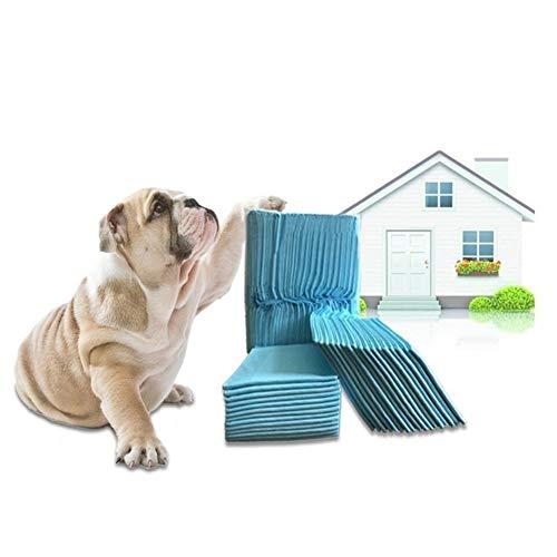 Perro Formación Almohadillas, Almohadillas para Adiestramiento Pañales Desechables para Mascotas- Higiénicos Alfombras para IR Al Baño, Productos para Mascotas Cachorro PIS