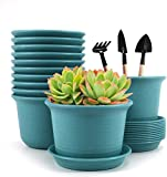 Plastic Flower Plant Pots, Set of 12 Flower Pots, 6 inch Plant Containers with Drainage Holes and Trays, Decorative Round Seedling Nursery Planters for Indoor Outdoor, Plants Not Included (Blue)
