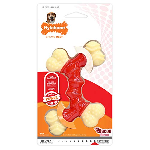 Nylabone Power Chew DuraChew