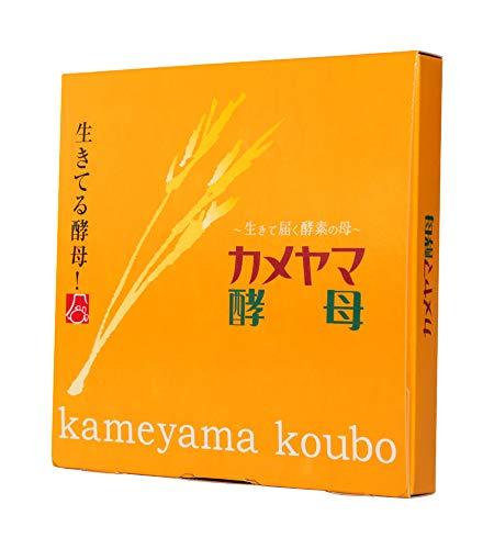 亀山堂 カメヤマ酵母 30包 [1998]