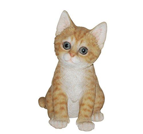Vivid Arts Pet Pals Playful Kittens Ginger