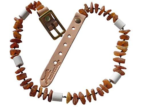 amberdog® ✅Bernsteinkette Hund mit EM Keramik Pipes - Effektive MIKROORGANISMEN - Bernsteinhalsband Hunde - Bernstein - Zeckenschutz? (28-33)