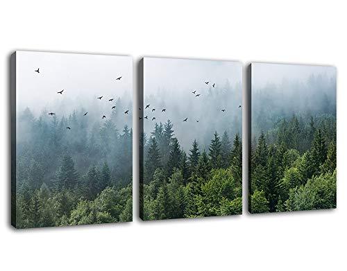 Arte de parede de floresta verde tropical virgem floresta montanha pássaro contemporâneo, arte moderna emoldurada para banheiro, quarto, berçário, sala de estar, escritório, cozinha, parede, 30,5 x 40,6 cm, 3 peças