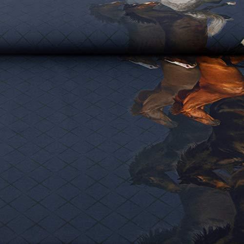Stenzo Jersey Digitaldruck Bordüre Pferde blau braun beidseitig 1,50m Breite