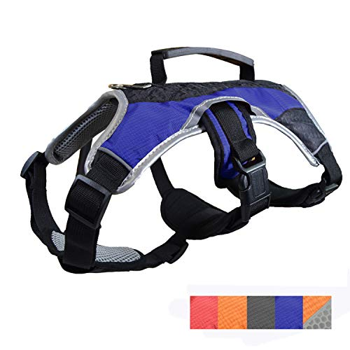 Peak Pooch Dog Walking Lifting Carry Harness