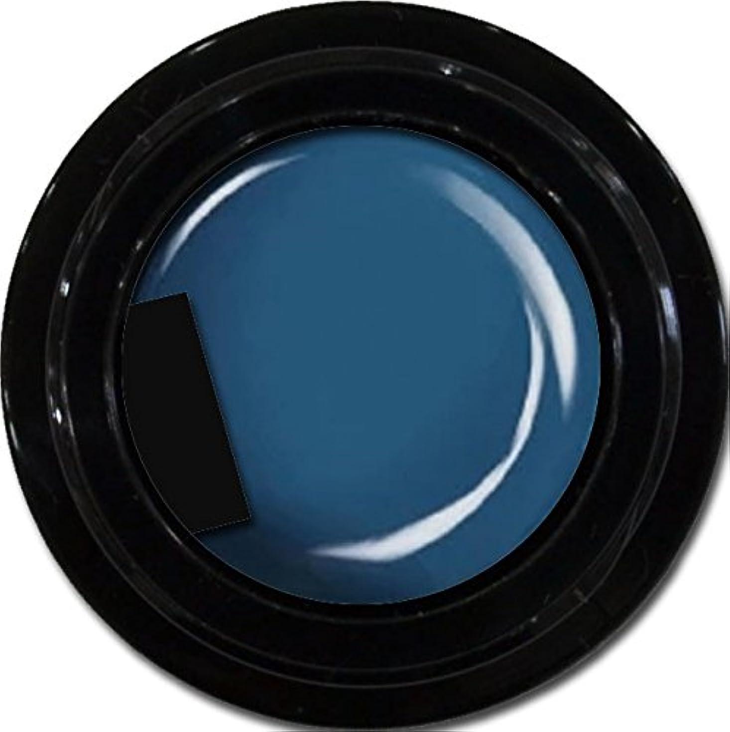 ナラーバー負荷浸すカラージェル enchant color gel M717 LegendBlue 3g/ マットカラージェル M717 レジェンドブルー 3グラム