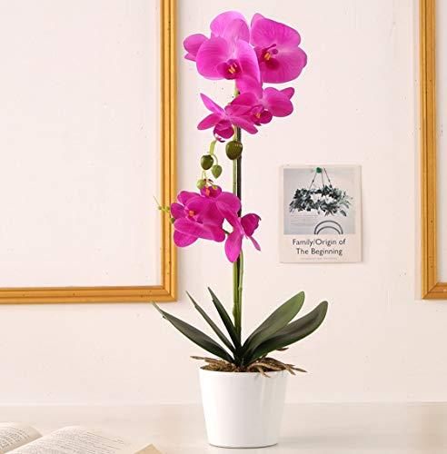 ENCOFT Flores Artificiales Plástico Flor de Phalaenopsis Realista Orquídea Mariposa con Maceta Imitación Cerámica Decoración (Púrpura (M))